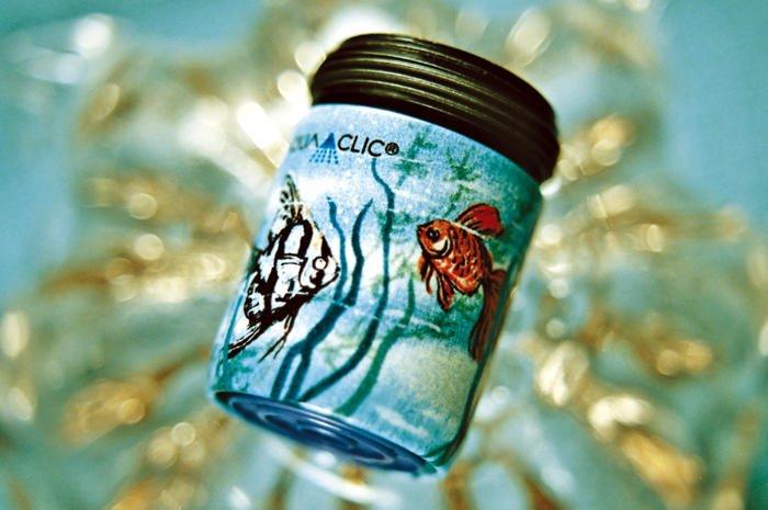 2 Rote Fische und 1 grauer Fisch im Meer  - passt zu allen Blautönen/ poissons rouges et gris sur bleu-tourquois / grey and red fisches in marvellous turquoise-blue water